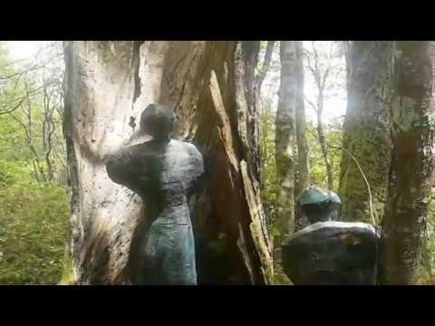 PREGUNTA ENARBOLADA / Vídeo y texto sobre la obra de Carmen Castillo