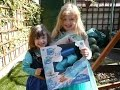 What The Kids Think Episode 3 Disney Frozen Videos Elsa 2 in1 Magic Snow Sleeve Play