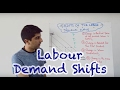 Labour Demand Curve Shifts