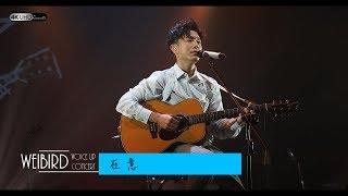 《在意》韋禮安 (字幕附歌詞/4K/2160p) 【2019 Voice Up Concert 讚聲演唱會】20190622