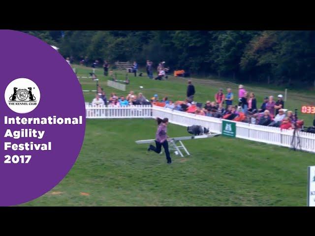 Olympia Quarter Final Large - G3-5 Novice - Part 6 | International Agility Festival 2017