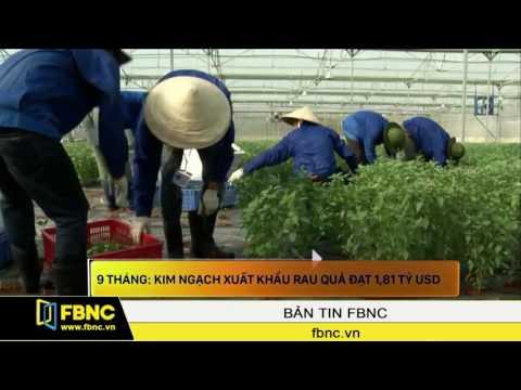 FBNC - 9 Tháng Kim Ngạch Xuất Khẩu Rau Quả đạt 1,81 Tỷ USD