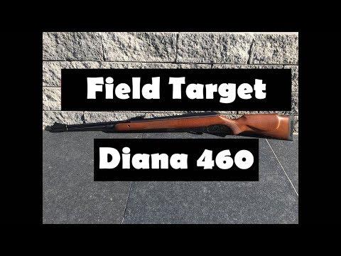 Diana 460 Magnum Präzisions Luftgewehr Review und Schusstest