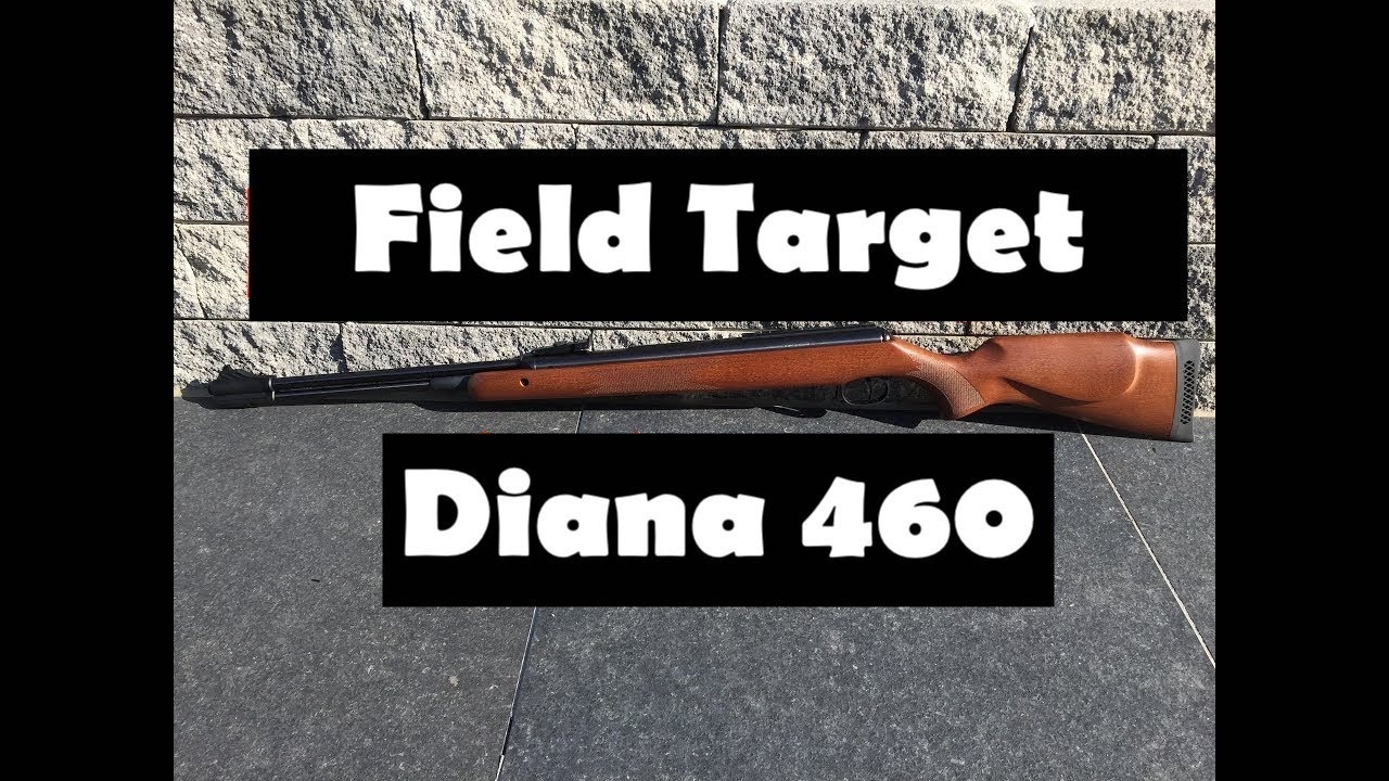 Diana model 52 vs diana airking review airguns reviews gunmart - Diana 460 Magnum Review And Shooting