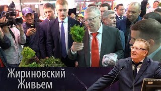 Владимир Жириновский посетил рынок в Туле