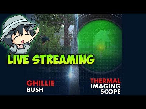[Live] TUNNGU UPDATE GILI BUSH DAN SCOPE TERMAL ! - 동영상