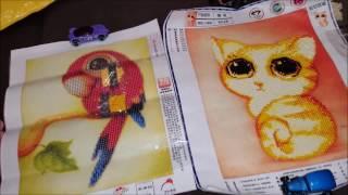 Алмазная вышивка мозаика КОТ И ПОПУГАЙ. Готовая работа. Вышивка с Алиэкспресс из Китая.