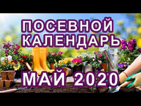 Лунный ПОСЕВНОЙ календарь на МАЙ 2020 🌱 КАЛЕНДАРЬ ОГОРОДНИКА и САДОВОДА | посадочный | календарь | посевной | посадки | лунный | май_2020 | на_2020 | расс | год | на