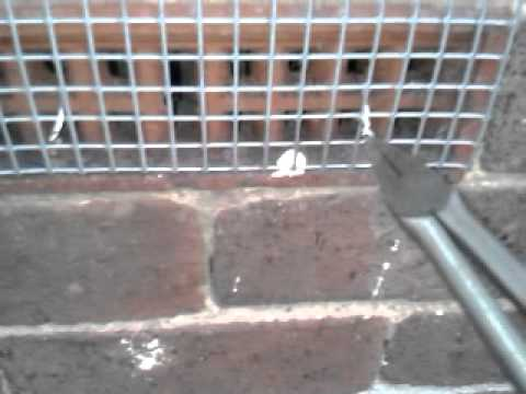 rat guard for air brick a simple way to prevent vermin access into