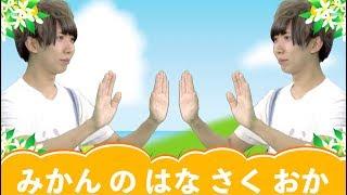 子供向けの歌┃みかんの花咲く丘(子供が喜ぶ 手遊び歌 童謡 人気 幼児 幼稚園 保育園)