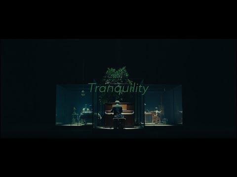 SawanoHiroyuki[nZk]:Anly 『Tranquility』YouTube EDIT