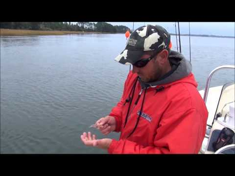 Trout Fishing In The Stono River With John Boy Koonce