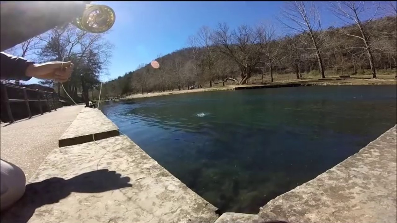 Fly fishing roaring river trout park youtube for Missouri out of state fishing license