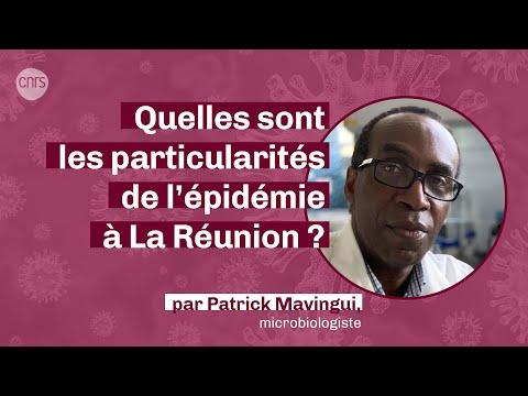 Quelles sont les particularités de l'épidémie à La Réunion ?   La parole à la science #PodcastCNRS