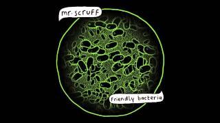 Mr. Scruff -