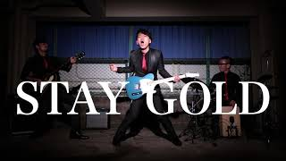 STAY GOLD MV  / KENNEL