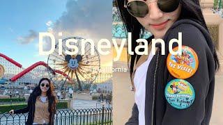 [vlog]미국 디즈니랜드에서 생일| 디즈니랜드 정복❤…