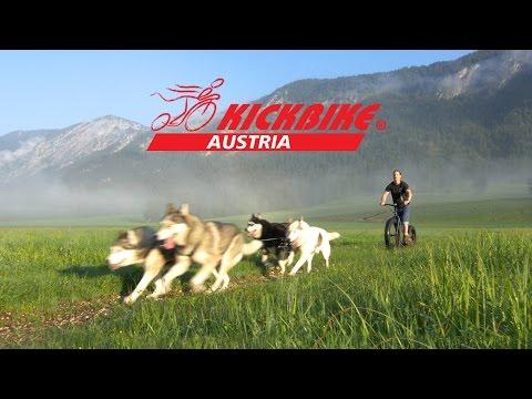 kickbike hund