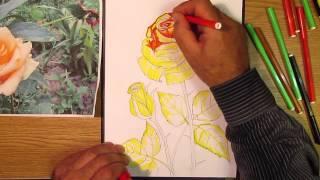 Как рисовать розу. Часть 2. Урок 27
