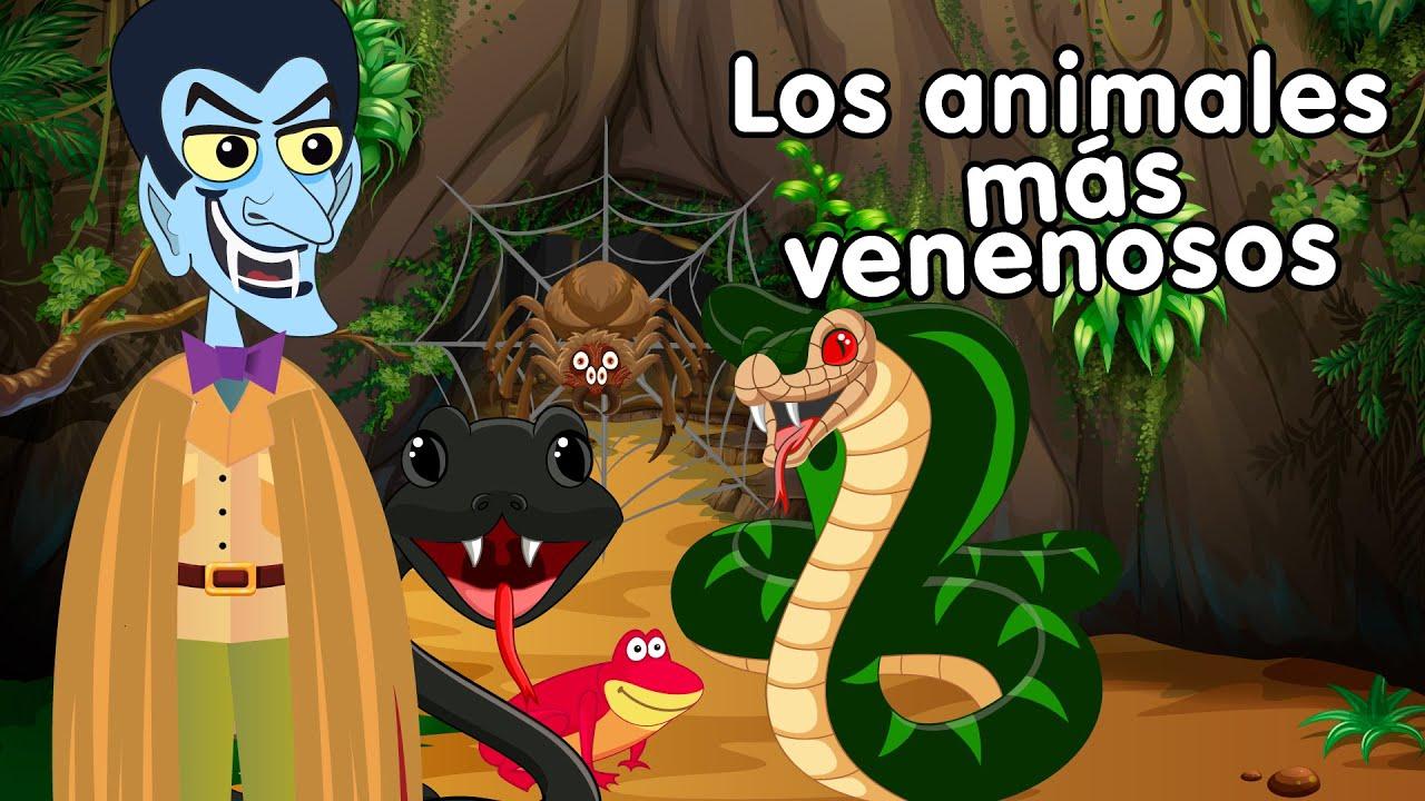 Download Los animales mas venenosos - Canciones infantiles