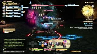 Final Fantasy XIV (14) Realm Reborn Guildhest with Gladiator