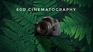 Canon 60D Video Tips