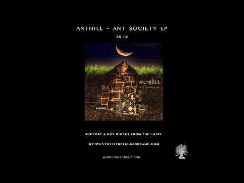AntHill - Ant Society