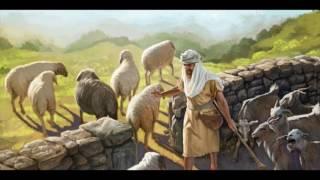 Овцы и Козлы