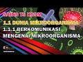1.1 Dunia Mikroorganisma : Bahagian 1 | SAINS KSSM T5