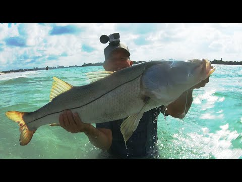 Snook Fishing Tips, Tackle, Baits And Where To Fish