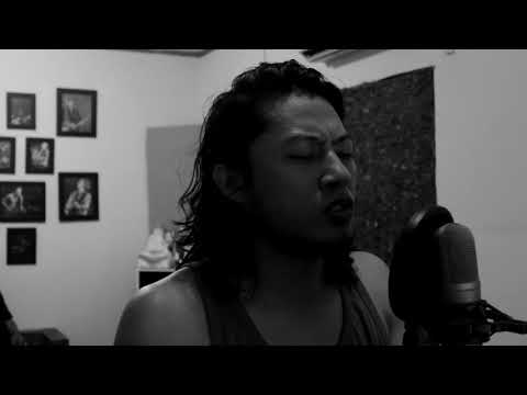 The Fly - Terbang ( Cover by : Mahlil.S )