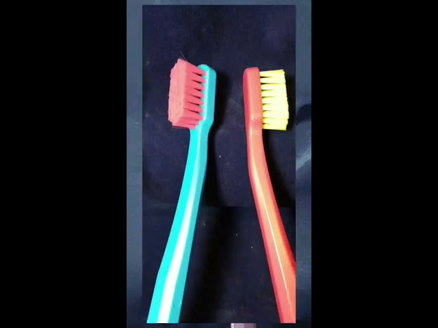 You're a Pink Toothbrush - Im a Blue Toothbrush