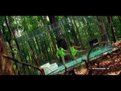 Gallothele Full Video Song - Sarvam Telugu Movie  || Aarya, Trisha, Sri Venkateswara Movies