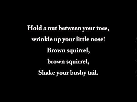 Brown Squirrel - lyrics
