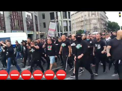 Hungarian hooligans protested against gypsies in Hungary yes