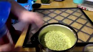 Making Homemade Celery Powder and Dried Celery Leaf