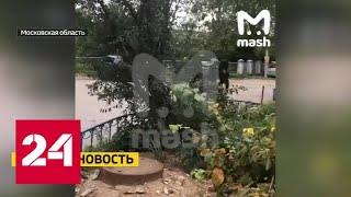 В Котельниках вооруженный мужчина закрылся  в парикмахерской - Россия 24