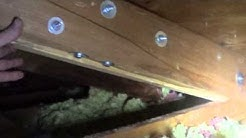 Sistering broken rafter in attic for roof repair June 2013