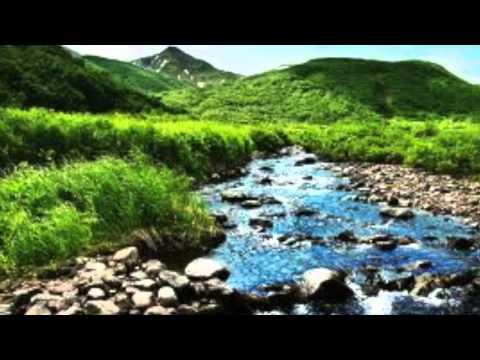 Greg Gangi's Talk - ANTH 320