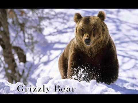Bill Monroe ::: Footprints In The Snow (with lyrics)