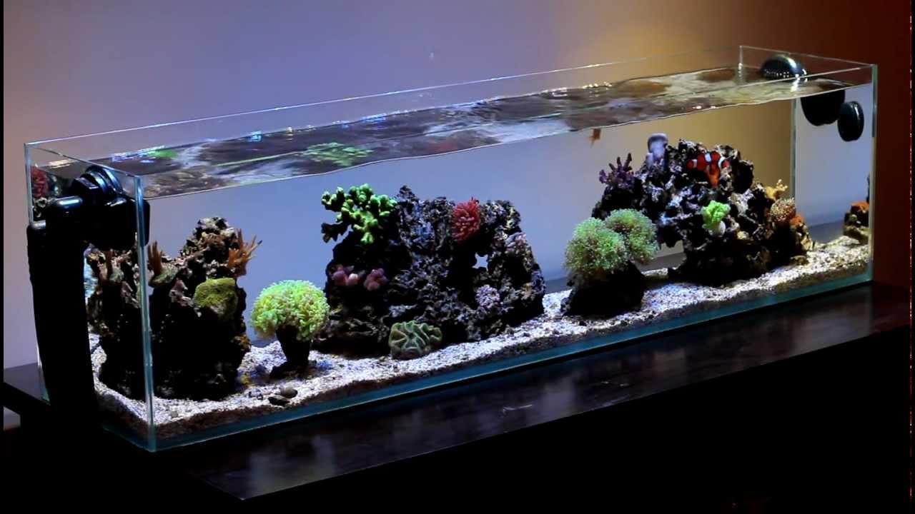 Mr Aqua 12 Gallon Long Nano