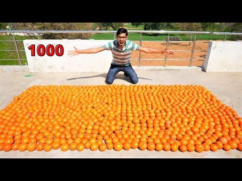 Extracting Juice From 1000 Oranges | 1000 संतरे में कितना लीटर जूस निकलेगा?