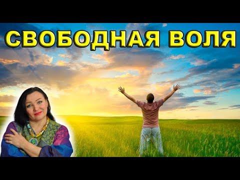 'СВОБОДНАЯ ВОЛЯ' вебинар