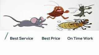Pest Control | Pest Control Service | Pest Control Near Me | Pest Control For Home - By Yourdoorstep