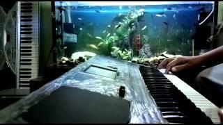 تايبين عزف اورغ KORG pa600 QT