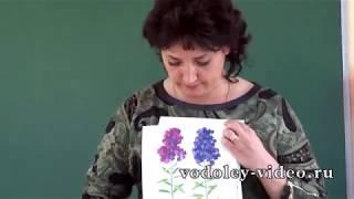 Выпускной в д/с.   Урок рисования