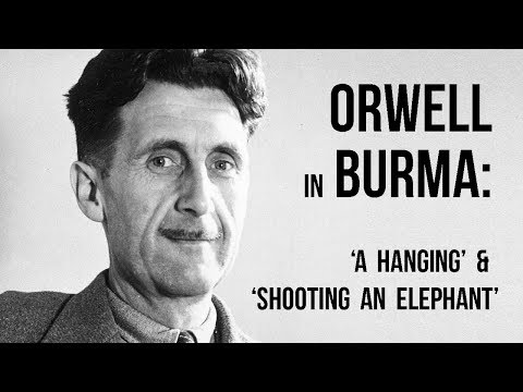 Видео Shooting an elephant essay