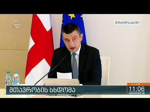 Special briefing in Georgian government about Covid-19