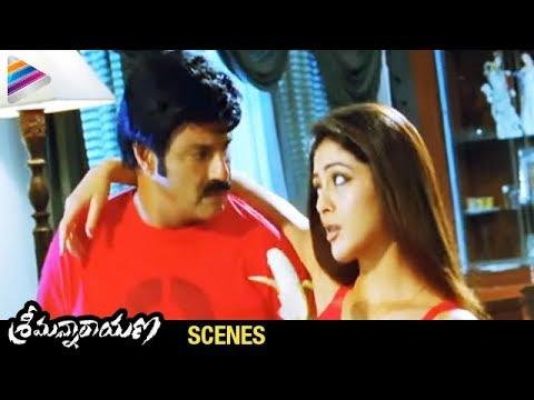 srimannarayana-movie-scenes---parvathi-melton-trying-to-convince-balakrishna---isha-chawla,-chakri