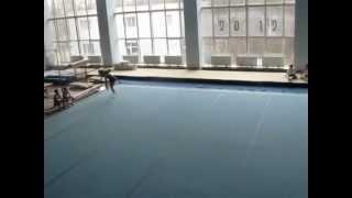 Гимнастика 2012